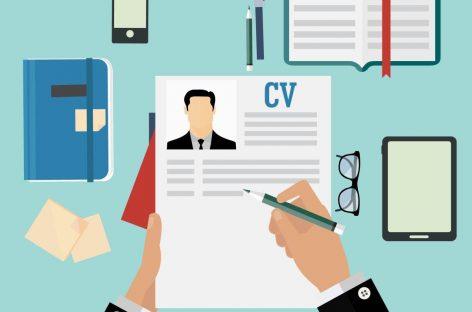 Conozca las últimas tendencias para armar un CV ganador